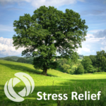 Stress Relief 2- Rapid Relaxation
