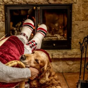 Happy woman resting by the fire with a blanket and caressing her golden puppy, feet in wool socks. Cozy scene